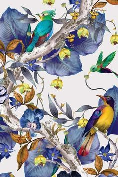 Osborne & Little - Rain Forest Wallpaper - - Blue - Sample from Rockett St George Rockett St George Forest Wallpaper, Bird Wallpaper, Osborne And Little Wallpaper, Victorian Curtains, Large Wall Murals, Large Scale Art, Detailed Drawings, Blue Wallpapers, Paint Colors For Home