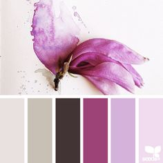 SnapWidget | today's inspiration photo for { petaled hues } is by the wonderfully talented @georgiestclair ... thank you for generously sharing your inspiring work in #SeedsColor , Georgie!