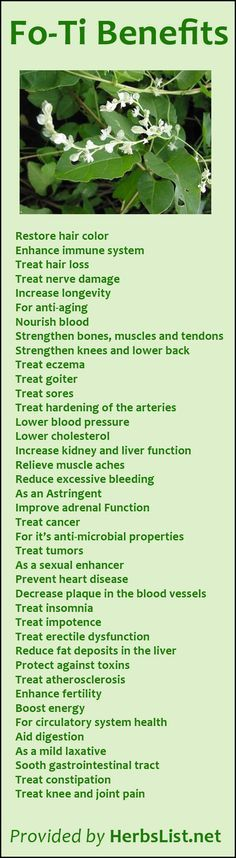 Fo-Ti Benefits: Get better health at: http://www.greenthickies.com
