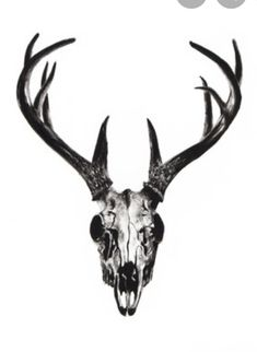 Deer Stags Homme Partout où Slipper