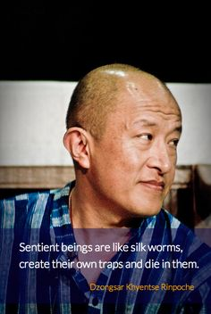 """Self Trapped ~ Dzongsar Khyentse Rinpoche http://justdharma.com/s/gw48u  Sentient beings are like silkworms, create their own traps and die in them.  – Dzongsar Khyentse Rinpoche  from the book """"Not for Happiness: A Guide to the So-Called Preliminary Practices"""" ISBN: 978-1611800302  -  https://www.amazon.com/gp/product/1611800307/ref=as_li_tf_tl?ie=UTF8&camp=1789&creative=9325&creativeASIN=1611800307&linkCode=as2&tag=jusdhaquo-20"""