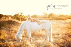 """""""Every horse, at least once in their lives, deserves to be loved by a little girl."""""""
