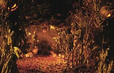 Symbols of Samhain and Halloween – fire, the dead, lanterns, harvest