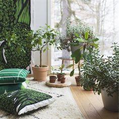 Marimekko fabrics - Buy online from Finnish Design Shop. Discover Unikko and other Marimekko fabrics for a modern home! Scandinavian Living, Scandinavian Design, Marimekko Fabric, Bathroom Plants, Green Rooms, Green Life, Nordic Design, Spring Home, Home Decor Inspiration