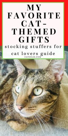 Looking for fun gift ideas for cat lovers? I got you! These are the 6 best cat-themed shops for cat moms and dads. These make perfect gifts for friends, family, coworkers, and veterinarians. Choose from cat-themed clothes, stuff for the home, jewelry, accessories, and more! Any cat mama and cat daddy will love these gift ideas. DIY a gift basket or use these ideas as stocking stuffers. They'd make great care package gifts too! Check out this cat gift for people guide today! #catlovers… Dog Mom Gifts, Gifts For Dog Owners, Cat Lover Gifts, Pet Gifts, Cat Lovers, Christmas Gifts For Pet Lovers, Cat Themed Gifts, Mama Cat, Veterinarians