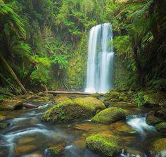 """""""Com certeza você já se banhou na queda de uma cachoeira. Sentindo a sensação da sua alma sendo purificada por inteira."""""""