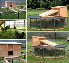 Trampoline Chicken Coop via Homestead Survival.