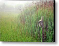 Bird House In Quogue Wildlife Preserve Canvas Print / Canvas Art By Rick Berk