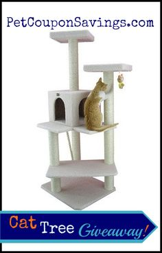 Cat Tree Furniture Condo Giveaway!