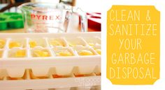 Clean Your Garbage Disposal With Lemon and Vinegar Ice Cubes