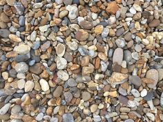 Is this just pebbles on a beach, or can you see the three letter name.?! #intheresomewhere #lol #pebblebeach #montereylocals #pebblebeachlocals - posted by LolEd https://www.instagram.com/lol_p_ed - See more of Pebble Beach at http://pebblebeachlocals.com/