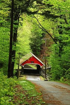 everyone know where the red covered bridge is Country Life, Country Roads, Country Living, Beautiful World, Beautiful Places, Old Bridges, Back Road, By Train, Covered Bridges