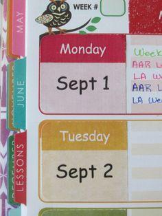 Erin Condren Teacher Planner Side Stickers (20 stickers)