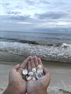 Cute beach pictures to take seashells summer ~instagram @ahsia.g~