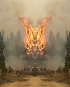 Soy el único al que le parece que el incendio en este bosque... #humor #memes #funny #divertido