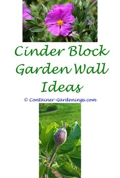 Wonderful Gardening Advice Websites