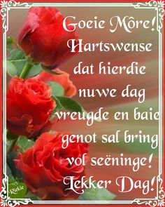 Lekker Dag, Goeie More, Good Morning Wishes, Love Rose, Afrikaans, Morning Quotes, Deep Thoughts, Short Hair Styles, Beautiful Pictures