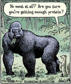 Raw Food Vegan Diet!