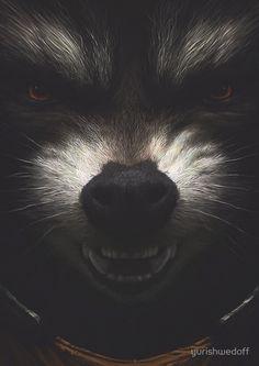 Rocket Raccoon by yurishwedoff