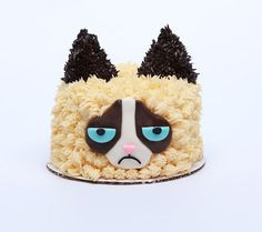 YouTuber Rosanna Pansino Turns the Iconic Grumpy Cat into a Cake #grumpycat trendhunter.com