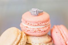 Round-cut engagement ring with halo and pave band {Thompson Photography Group}