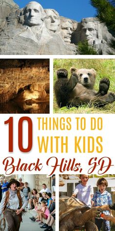 Are you are looking for an amazing family vacation? The Black Hills of South Dakota has it all. History, wildlife, adventure, and more!