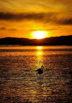 Namibia Sunset by Sergio Pessolano.