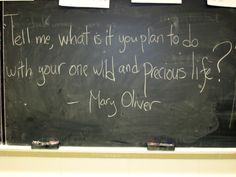 Mary Oliver - my favorite poem and poet