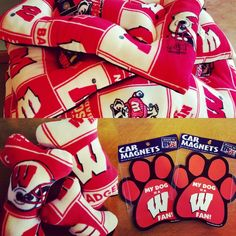 Wisconsin Badger dog beds, toys, and car magnets.