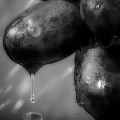 Wet Grapes Two - Original fine art photography by Bob Orsillo  Copyright (c)Bob Orsillo / http://orsillo.com - All Rights Reserved. Buy art online. Buy photography online