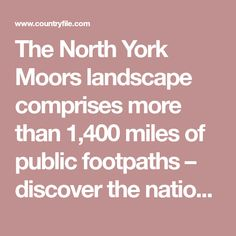 The North York Moors landscape comprises more than miles of public footpaths – discover the national park's vast moorland and sweeping coastline with our favourite walks North York, Walks, National Parks, Public, Landscape, Scenery, Corner Landscaping