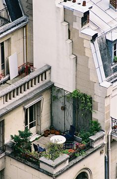 Tiny garden on the rooftops of Paris