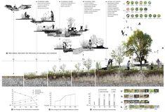 Dead & Alive - Tree Burial Cemetery Design on RISD Portfolios Landscape Architecture Section, Architecture Panel, Architecture Graphics, Landscape Diagram, Landscape Design Plans, Architecture Presentation Board, Architectural Section, Landscape Drawings, Dead Alive