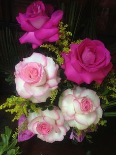 Csodaszép romantikus rózsák..