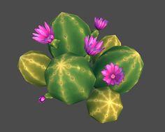 (cactus, 25/11/2014)