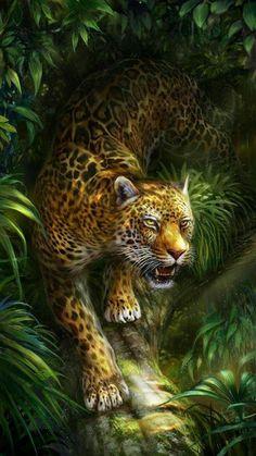 Wild Animal Wallpaper, Leopard Wallpaper, Jungle Animals, Animals And Pets, Cute Animals, Tiger Pictures, Animal Pictures, Beautiful Cats, Animals Beautiful