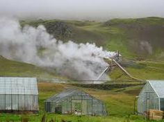 iceland growing houses
