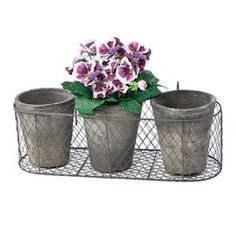 """Bring a touch of style to your garden oasis with this eye-catching essential, the perfect design for your favorite plant.    Product: 3 Pots and 1 caddy  Construction Material: Wire and clay Color: Clay     Dimensions: Pot: 5.75"""" H x 5"""" Diameter eachCaddy: 3.75"""" H x 10.25"""" W Shipping: This item ships small parcelExpected Arrival Date: Between 04/07/2013 and 04/15/2013Return Policy: This item is final sale and cannot be returned"""