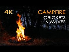 4K Campfire by the Sea - Crickets & Ocean Waves - Night Forest Nature Sounds - Relaxing Fireplace - YouTube
