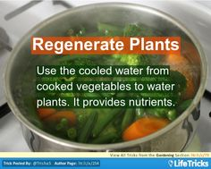 Reuse Water while you're at it. Boiled Vegetables, Growing Vegetables, Veggies, Ways To Save Water, Outdoor Fun, Outdoor Decor, Garden Weeds, Mini Farm, Love Garden