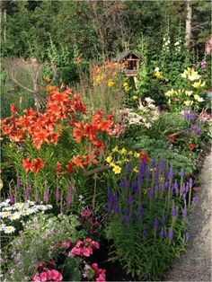 Garden Ideas Edmonton favourite alberta-hardy perennials of nait's head groundskeeper