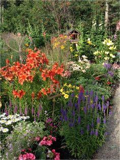 Garden Ideas Edmonton favourite alberta-hardy perennials of nait's head groundskeeper