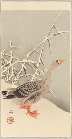Ohara Koson: Goose and Reeds