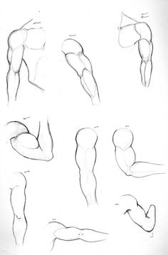 Human Figure Drawing Reference Arms by - Arm Drawing, Hand Drawing Reference, Art Reference Poses, Body Base Drawing, Anatomy Reference, Drawing Body Proportions, Realistic Eye Drawing, Human Anatomy Drawing, Human Figure Drawing