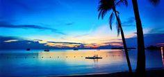 Image result for jamaica photos