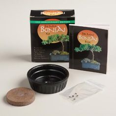 Great for gifting, this fun kit is complete with everything you need to grow your own mini bonsai tree, including seeds, a pot and an instruction book.