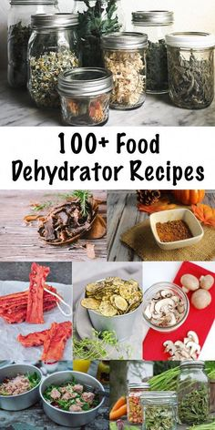 100 Food Dehydrator Recipes Food Dehydration is one for the oldest (and healthiest) methods of food preservation. Create healthy dehydrated sancks for your family and make busy weeknight meal planning easy with simple dehydrated soups and meals. Dehydrated Vegetables, Dried Vegetables, Veggies, Dehydrated Food Recipes, Dehydrated Backpacking Meals, Canning Recipes, Snack Recipes, Snacks, Meat Recipes