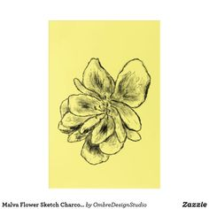 Shop Malva Flower Sketch Charcoal Yellow Acrylic Print created by OmbreDesignStudio. Wood Wall Art, Wall Art Decor, Flower Sketches, Wall Decals, Charcoal, Yellow, Prints, Poster, Collection