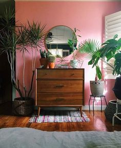 Tropisch urban jungle interieur met fel roze muur en retro ladekast.