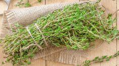 A kakukkfű több mint egyszerű fűszernövény Kids Health, Jaba, Natural Cures, The Cure, Garden, Nature, Cook Books, Meditation, Parents